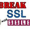 Break SSL Protection Using SSLStrip and Backtrack 5
