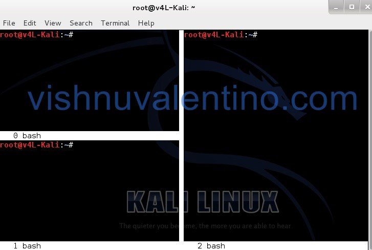 Split Kali Linux Terminal Window